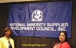 .NMSDC Logo BANNER - Applique Stitched Nylon